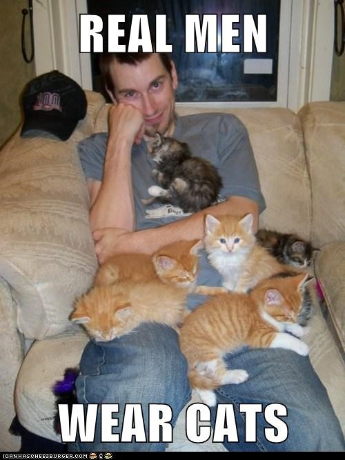 captions,Cats,couch,kitten,men,real men