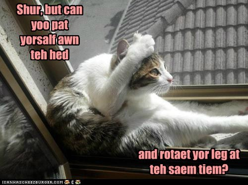 captions Cats head leg physical rotate same time simultaneous - 6481196544
