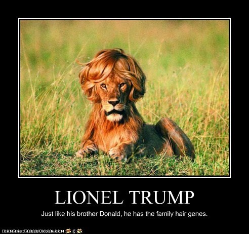 LIONEL TRUMP Just like his brother Donald, he has the family hair genes.