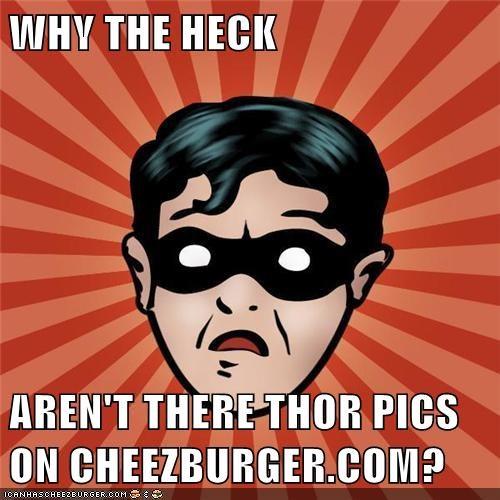 Cheezburger Image 6481503488