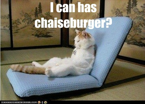 Cheezburger Image 6481593088