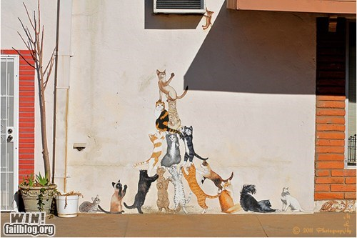 Cats,hacked irl,kitties,lolcats,Street Art