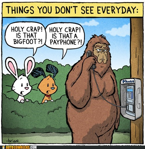 bigfoot,payphone,shoeboxblog