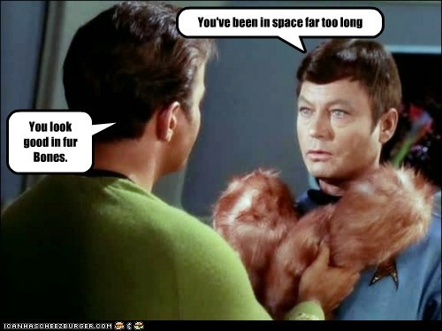 bones,Captain Kirk,DeForest Kelley,fur,McCoy,Shatnerday,space,Star Trek,too long,tribbles,William Shatner