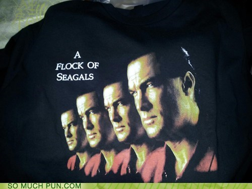 a flock of seagulls,band,Hall of Fame,literalism,similar sounding,steven seagal,surname