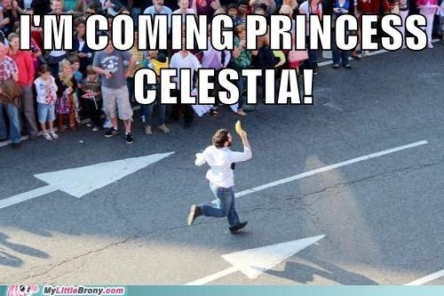 banana IRL princess celestia - 6482414336