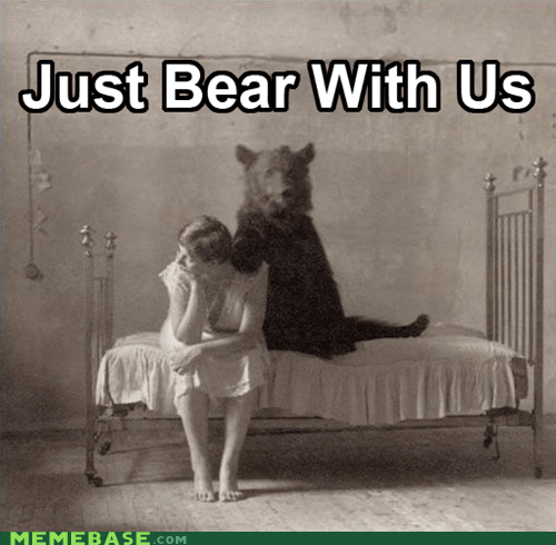 bear,bear with us,Memes,puns