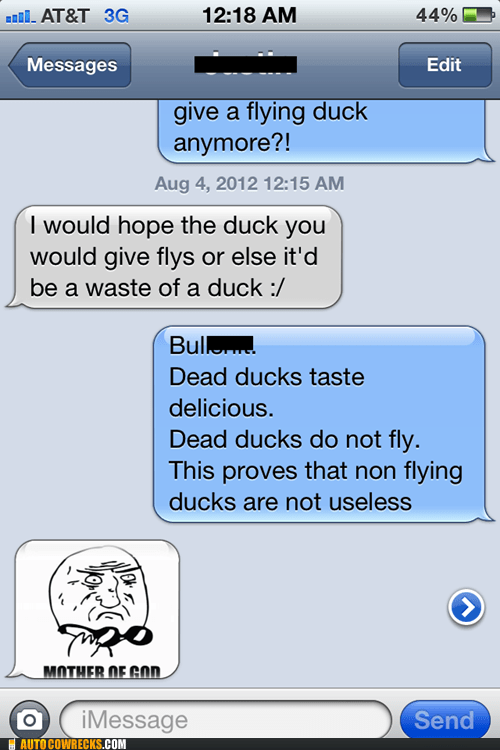 dead ducks duck mother of god - 6482960128