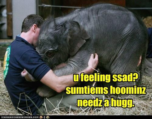 u feeling ssad? sumtiems hoominz needz a hugg.