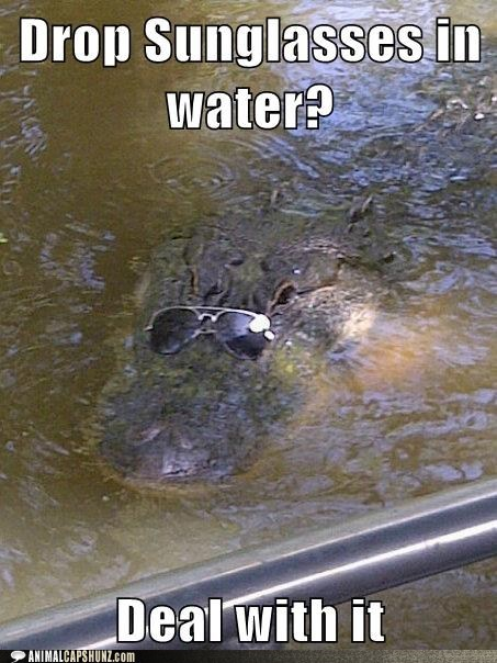 aligator captions Deal With It scary sunglasses wearing - 6483589888