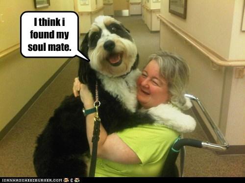 friend hug smile smile. what breed - 6483750144