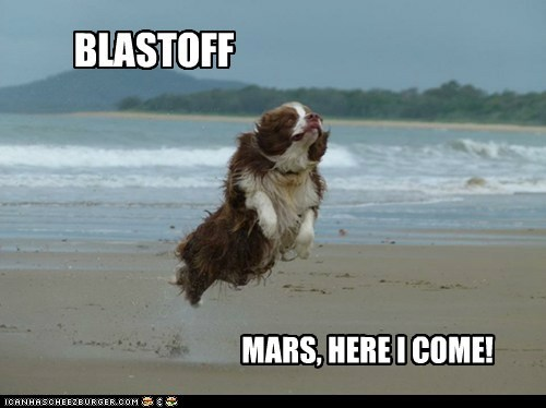 beach blast off dogs Mars NASA news space spaniel - 6483827456