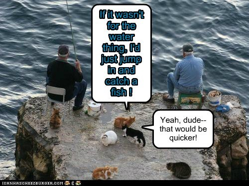 If it wasn't for the water thing, I'd just jump in and catch a fish ! Yeah, dude--that would be quicker!
