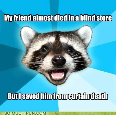blind,certain,curtain,Lame Pun Coon,similar sounding,variations on a theme