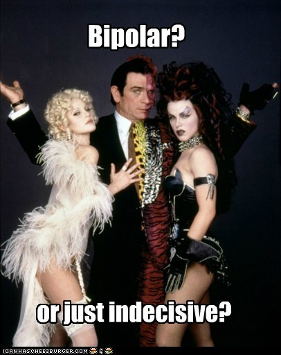 batman batman forever bipolar harvey dent indecisive tommy lee jones two face - 6484615424