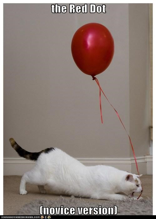 balloon captions Cats laser novice red red dot starter