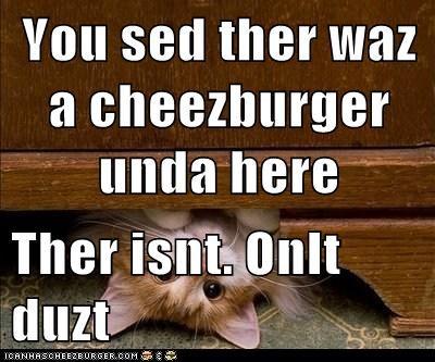 Cheezburger Image 6484829696