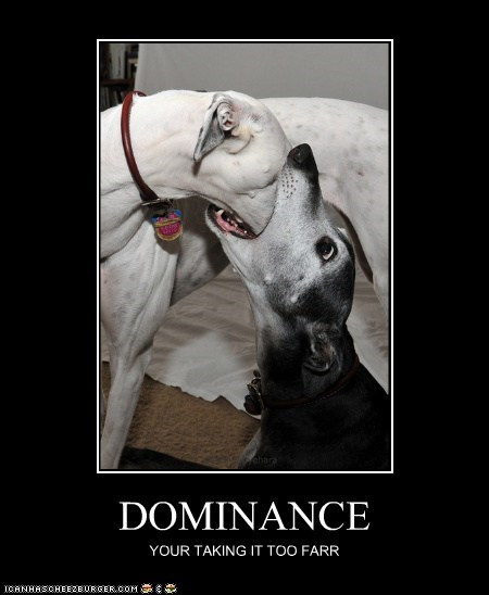 DOMINANCE YOUR TAKING IT TOO FARR