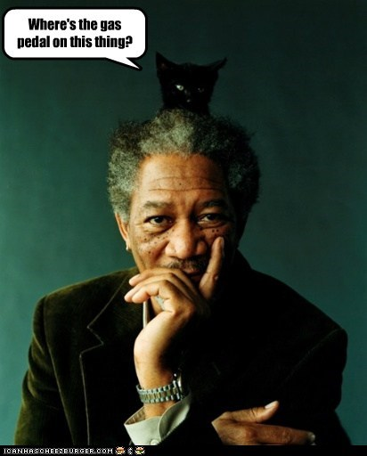 actor,captions,car,Cats,drive,gas,kitten,Morgan Freeman,pedal