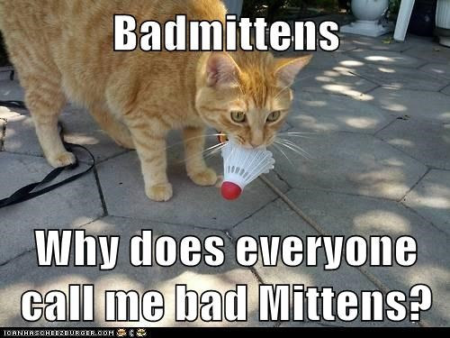 Badmittens Why does everyone call me bad Mittens?
