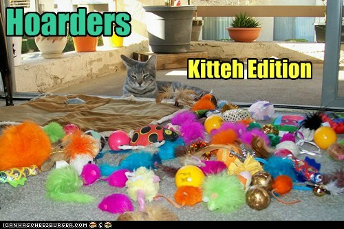 Hoarders Kitteh Edition