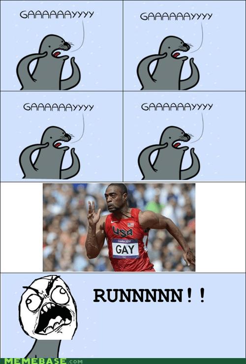 gay gay seal London 2012 Memes olympics - 6485810688