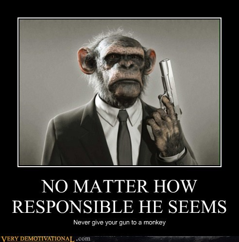 bad idea,gun,hilarious,monkey,responsible