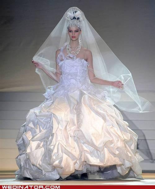 bride funny wedding photos just pretty wedding dress - 6486121984