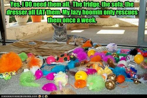 Yes, I DO need them all. The fridge, the sofa, the dresser all EAT them. My lazy hoomin only rescues them once a week.