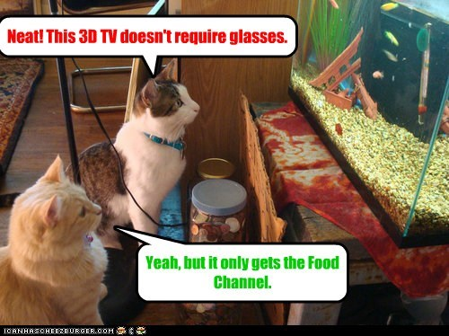 3d,3D tv,aquarium,captions,Cats,fish,Food Network,glasses