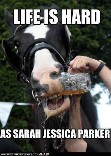 LIFE IS HARD AS SARAH JESSICA PARKER