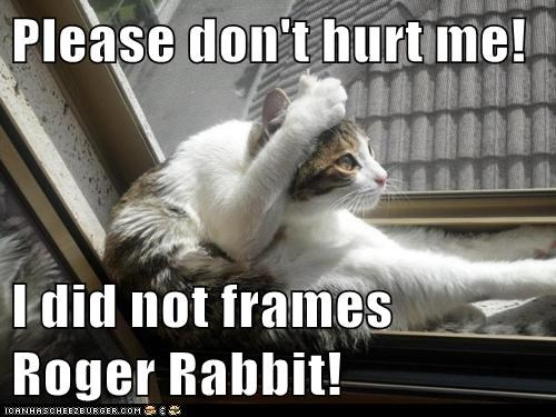 Please Dont Hurt Me I Did Not Frames Roger Rabbit Lolcats Lol
