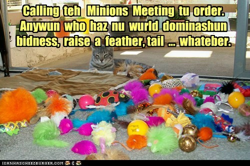 captions Cats gather meeting minions work worship - 6487205888