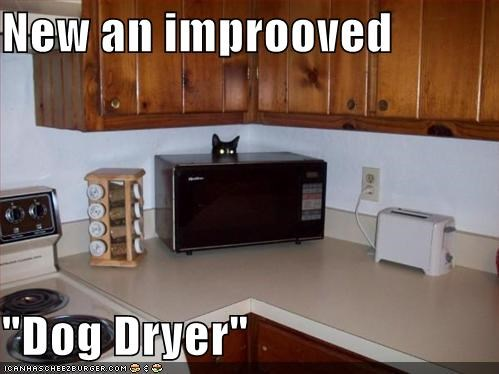 Cheezburger Image 648720640