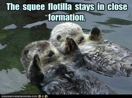 formation,olympics,otters,sports,squee,syncronized