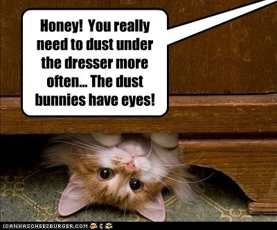 Honey! You really need to dust under the dresser more often... The dust bunnies have eyes!