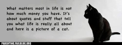 cat Hall of Fame life quotes