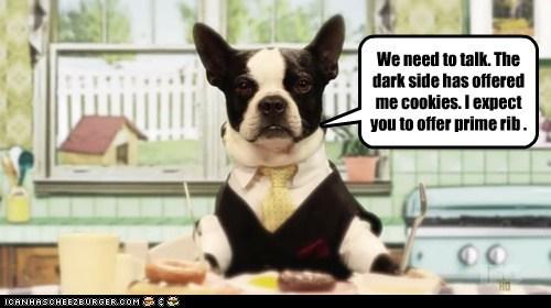 bidding boston terrier cookies dark side dogs make me an offer prime rib - 6488137984