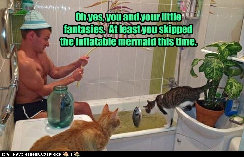 bathtub captions Cats fantasy fishing human pretend silly - 6488474368