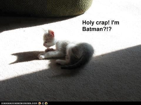 batman,captions,costume,lolcats,shadows,the dark knight,the dark knight rises