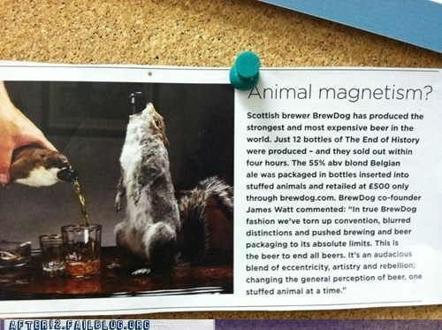 animal magnetism,brewdog,squirrel
