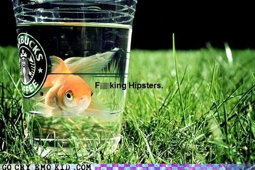 goldfish hipsterlulz hipsters instagram - 6488775936