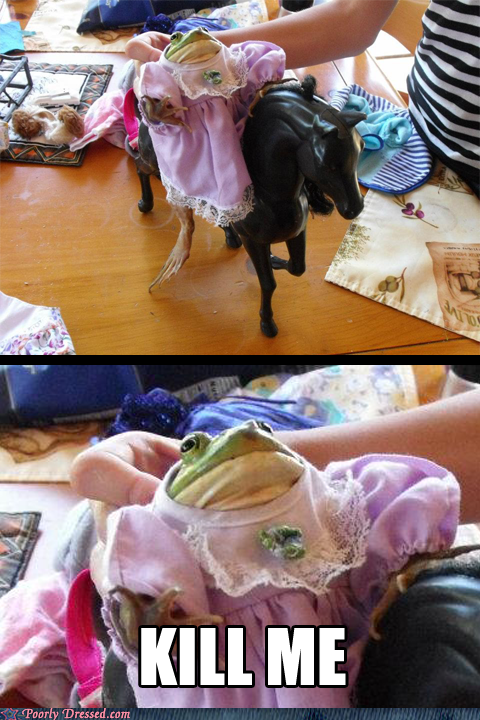 dress,frog,nope,pet,princess
