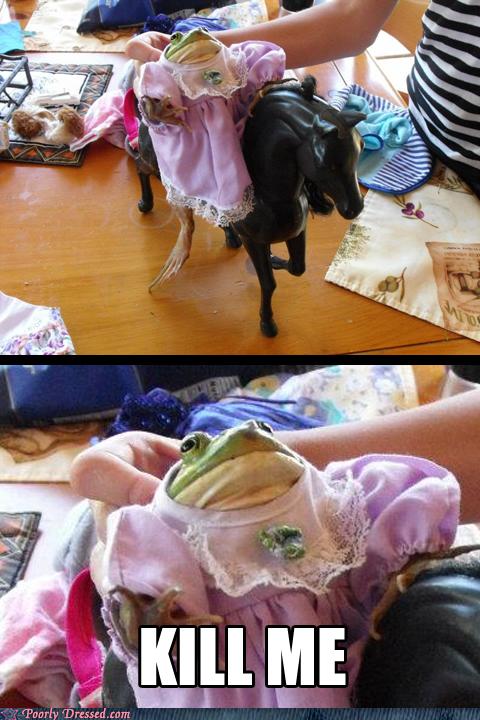 dress frog nope pet princess - 6488812544