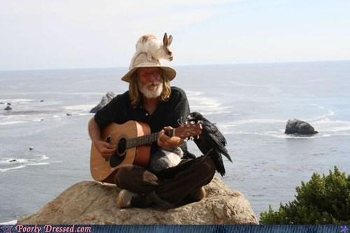 animals,guitar,hat,pet,rabbit,street performer,werid