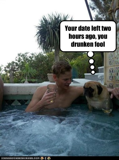 captions dogs drunk flirtation hottub jacuzzi pug