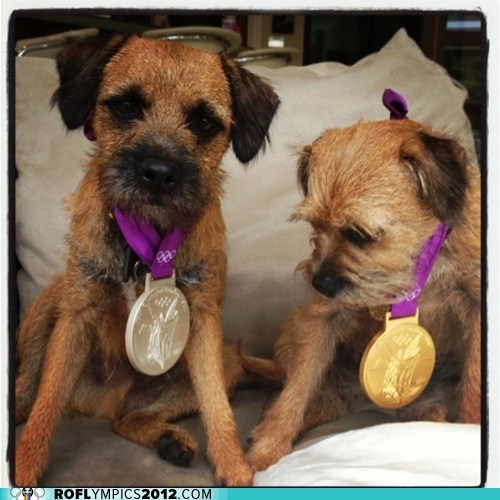 andy murray dogs gold London 2012 medals olympics silver tennis - 6491025408
