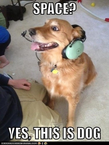 curiosity,dogs,headset,hello yes this is dog,mars rover,space,this is dog