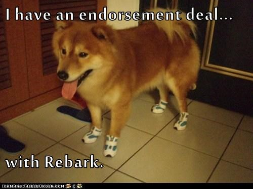captions dogs endorsement shiba inu shoes sneakers tongue - 6491264000