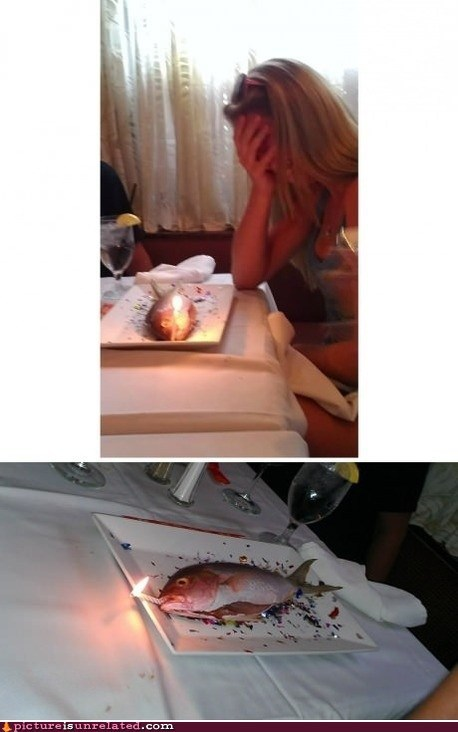 cake,fish,happy birthday,seafood,wtf